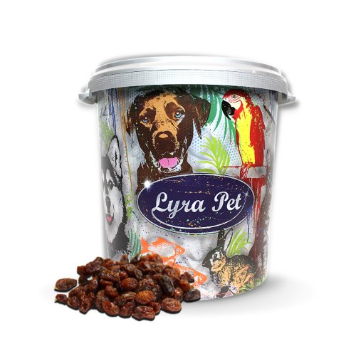 10 kg Lyra Pet® Rosinen in 30 L Tonne